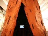 redwoodvideo